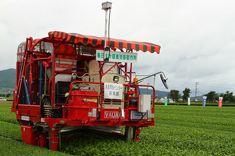 New tea harvest machines for the future !