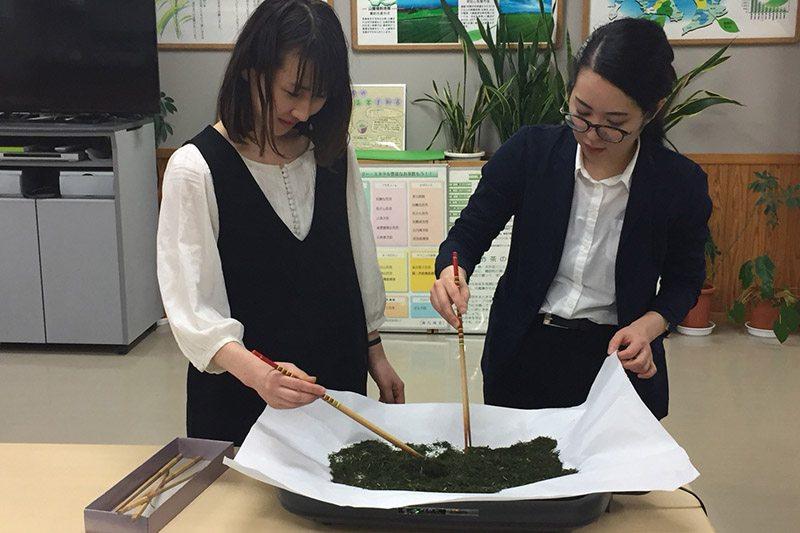 Marugoto Nippon Asakusa visits Chiran