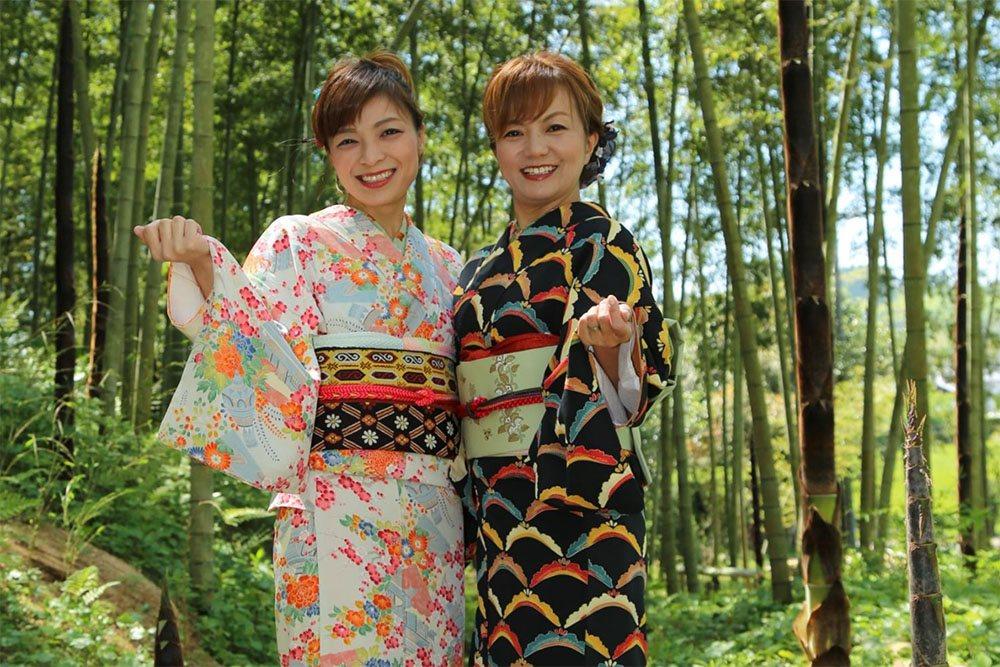 Enjoy The Chiran Samurai Residence Gardens !