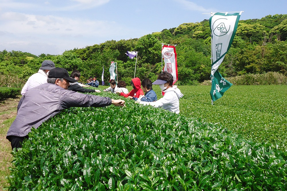 Agriland Ei Welcomes Tea Owners!