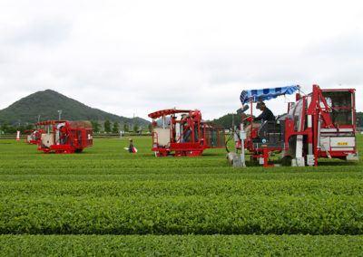 tea_harvest_machine_contest_2018_06